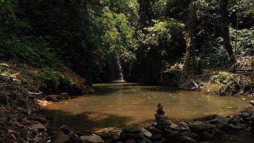 A Hidden Waterfall Inside A Rain Forest