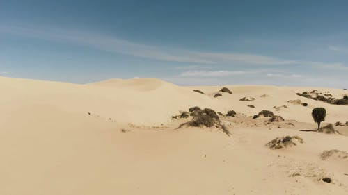 Sand Dunes Forming In A Sandy Surface