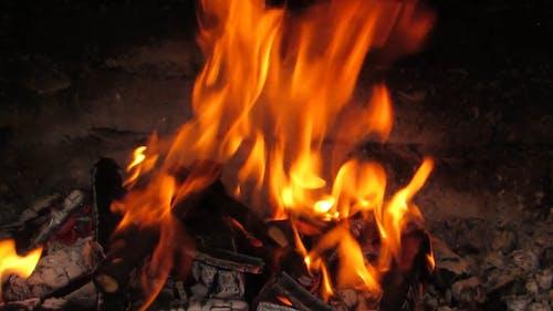 Płonące Drewno Opałowe
