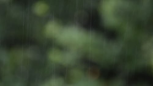 Raindrops Falling