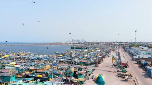 A Fishing Village On The Sea Bay In India
