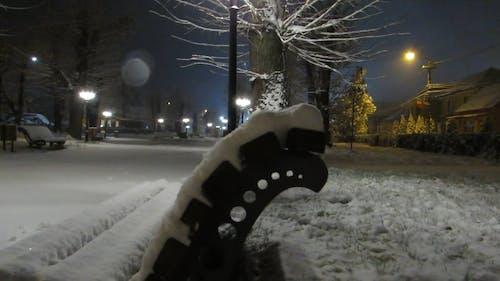 Parkgrond En Bankjes Bedekt Met Sneeuw