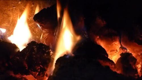 Burning Wood In Close-up View