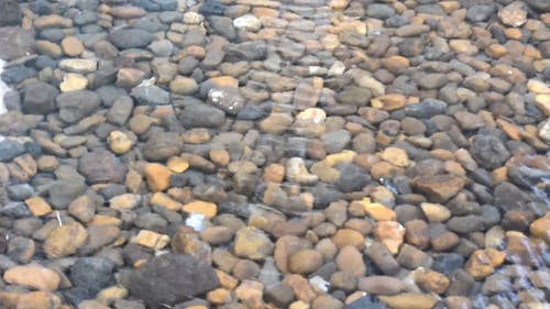 Many Stones On A Pond With Clear Water