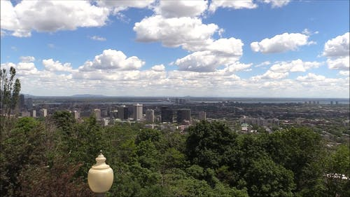 View Of The Montreal City From Above The Hills