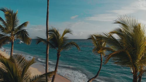 Seascape Footage Of A Beach Resort