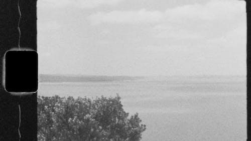 đoạn Phim Cũ Về Một Chiếc Thuyền Máy Trên Cảng Auckland