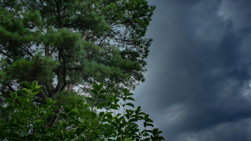 Dark Clouds Moving With The Strong Blows Of The Wind