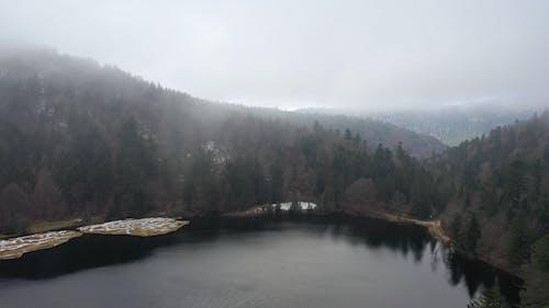 Blick Auf Einen See, Umgeben Von Bäumen