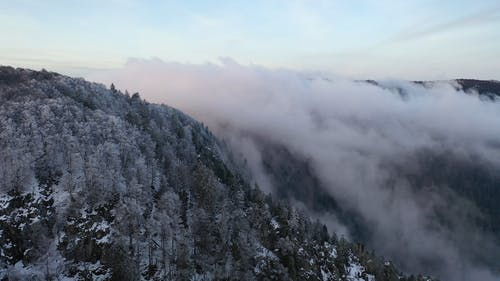 A Cloud Formation Covering Portions Of The Forest Mountain