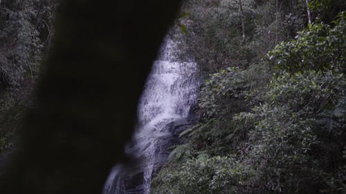 Slow Motion Footage Of The Waterfalls In The Forest