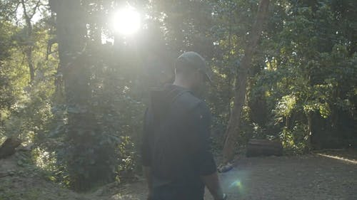 A Photographer Taking Pictures Of The Forest Scenery
