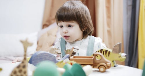 Footage Of The Child Playing Wood Curved Animal