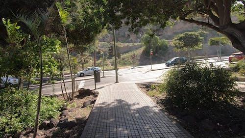 Fahrzeuge, Die Bei Tageslicht Bergauf / Bergab Fahren