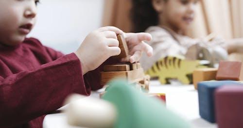 Twee Kinderen Spelen Met Houten Speelgoed