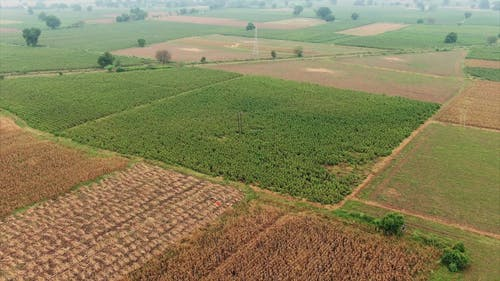 Drone Footage Of A Land Use In Farming Agricultural Crops