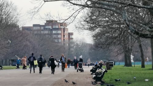 People Activities In London Hyde Park