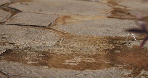 Raindrops On The Ground