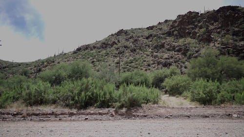 A Car Driving through a Dirt Road