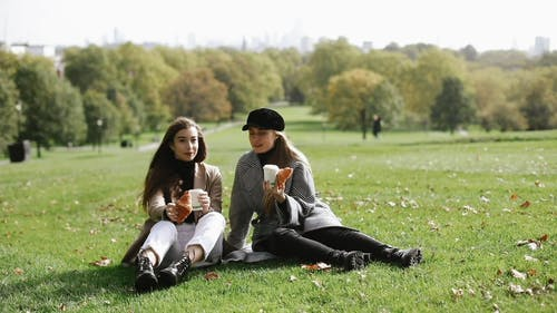Footage Of Women Talking And Eating In The Park