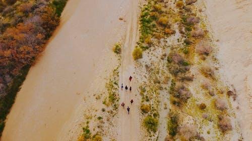 A Group Of People Trekking A Desert Land