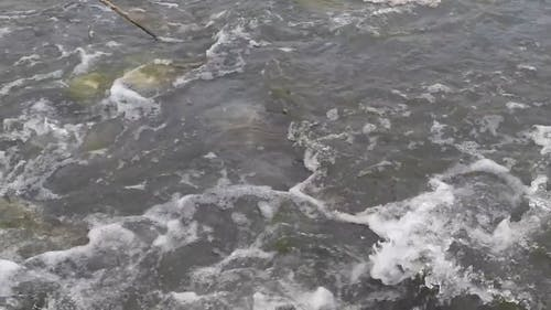 Rocks Breaks The Flow Of A  Shallow River