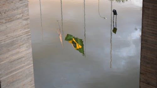 Reflection Of The Flags In The Water