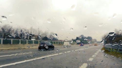Wet Windshield
