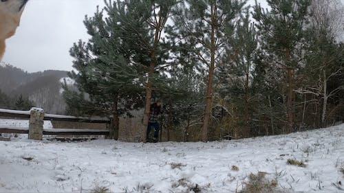 A Woman Enjoying The Falling Snow