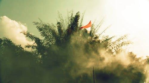 250 Engaging Indian Flag Videos Pexels Free Stock Videos