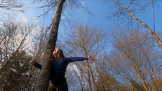 A Woman With Arms Spread Leaning On A Tree Trunk