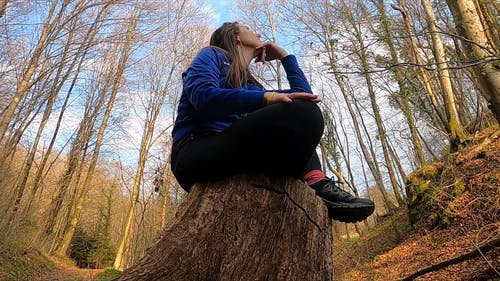 A Woman Seated On The Base Of A Cut Tree Trunk