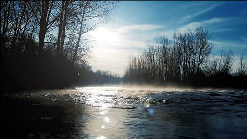Mist Formation Above The River Surface