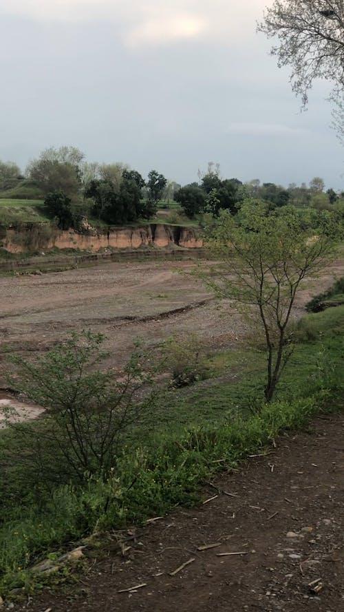 A Pan Shot of an Empty Grass Field