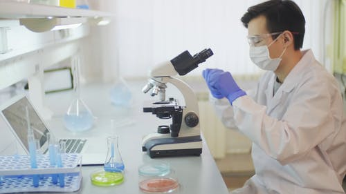 A Scientist Working In A Laboratory