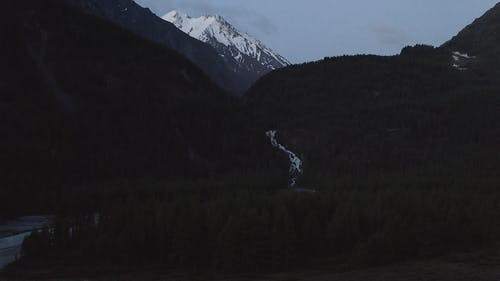 Misty Mountains And Valley Of Trees At Dusk