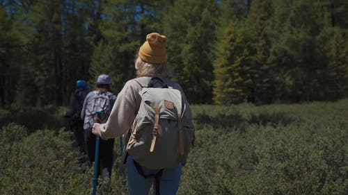 People Hiking Towards The Woods