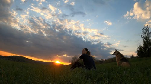 A Woman And Her Dog Sitting On Grass Enjoying The Sunset View
