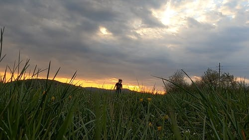 Woman Running With Her Dog In A Grass Field