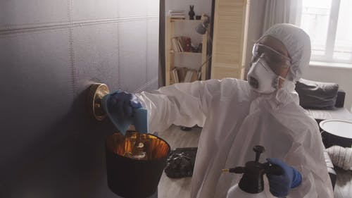 Person Cleaning A Room