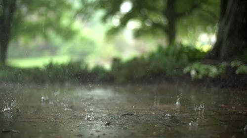Slow Motion Footage Of Rain Falling On The Ground