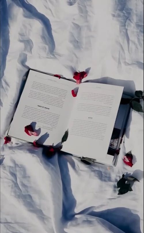 An Open Book with Petals on Top