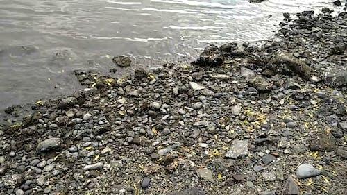 Cobblestones On A Rocky Seashore