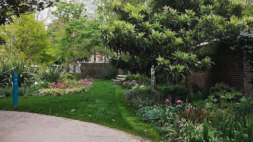 A Shot of a Rich Garden