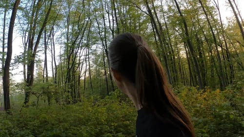 A Woman Walking In The Forest