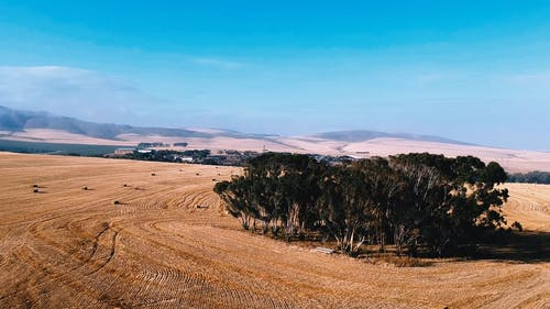 Drone Footage Of Cropland