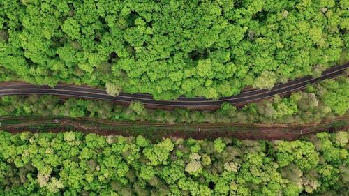 A Road Cutting Through A Forest