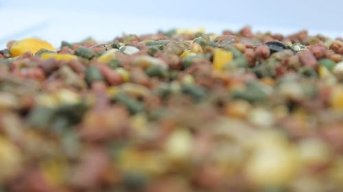 Processed Feeds And Pellets For Chickens