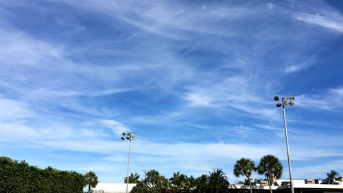 Cirrus Clouds Beneath The Blue Sky