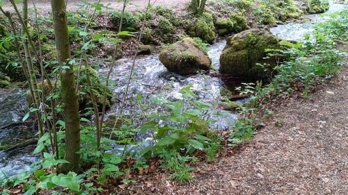 A Natural River Stream Flowing